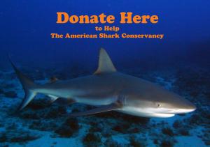 Donate Shark